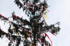 2010 Kerb Wallau 002