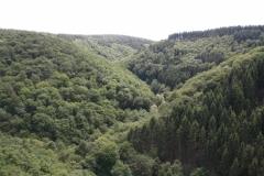 Ein Ausblick in das überwanderte Tal.