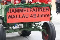 021 Wallau 2017